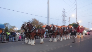 Clydes Dales (800x458)