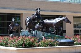 Horses @ Library (800x530)