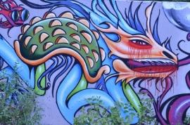 Dragons (800x530)